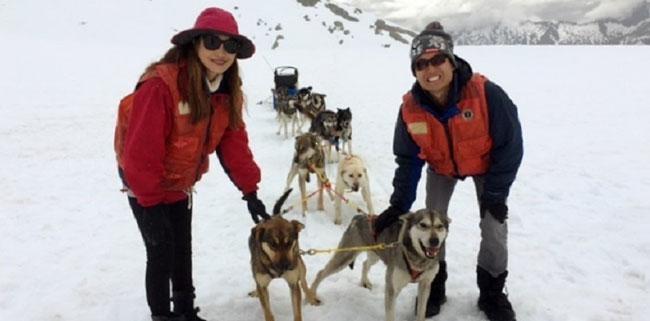 Alaska Cruises and Cruise Tours